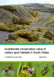 Importance of colliery spoil for invertebrates