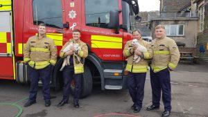 Don't Burn Bernie Fire Service and PONT Cymru