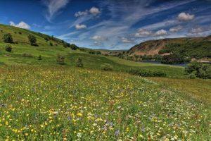 Elan Valley PONT Cymru Sorcha Lewis