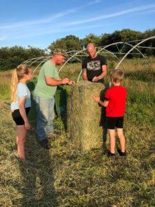 hay making gower cow club pont cymru